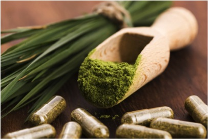 Spirulina – a modern day superfood!