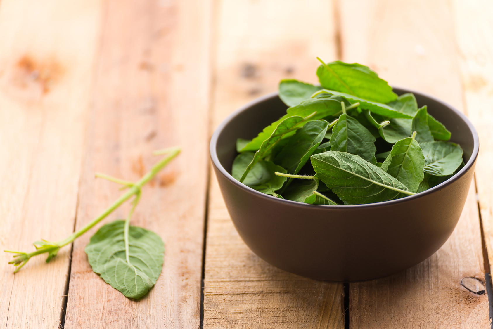 holy basil in a bowl
